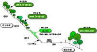 在来木本種での道路法面緑化の提案